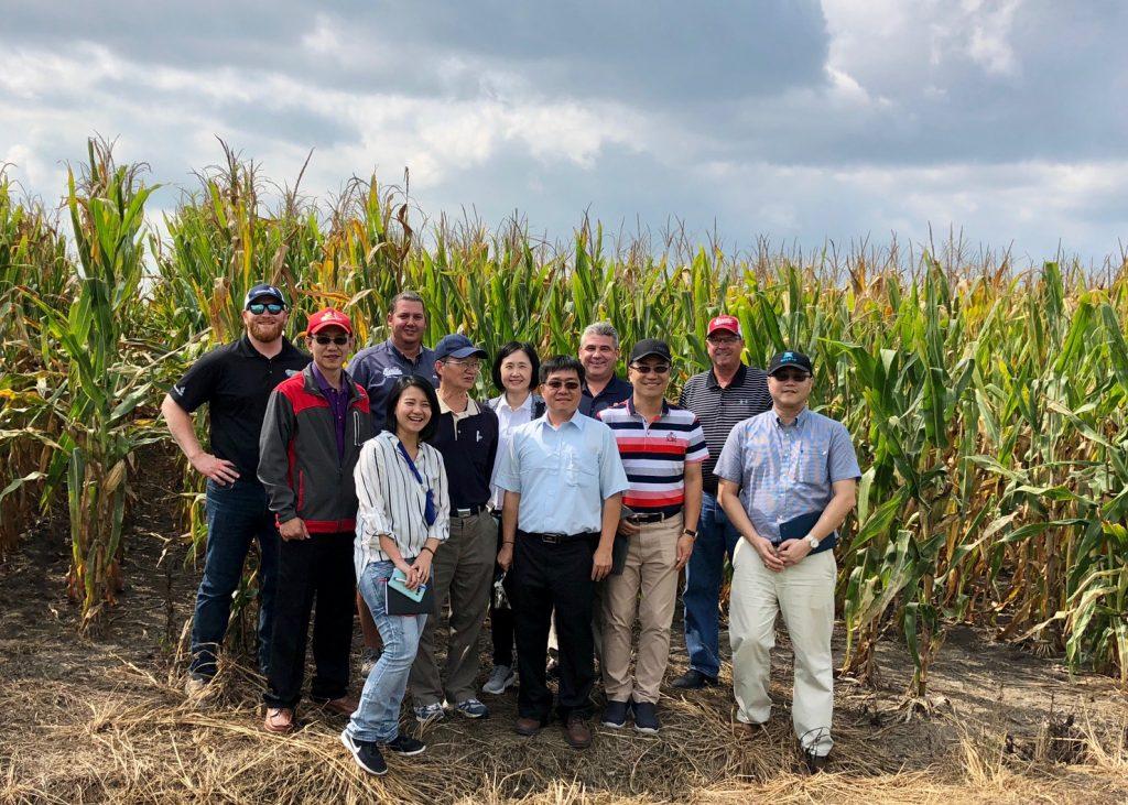 Taiwan Grain Quality Survey Team - Corn Field - 02
