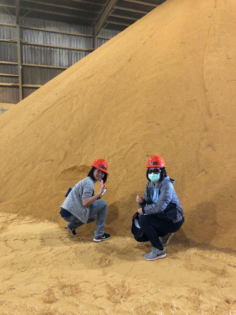 Taiwan Grain Quality Survey Team - DDGS