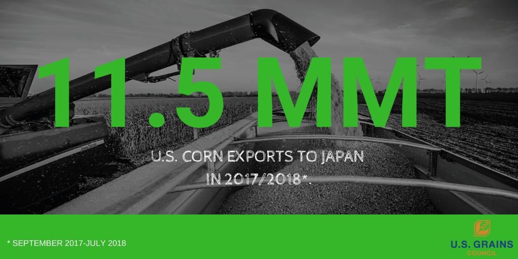 Japan Corn Update