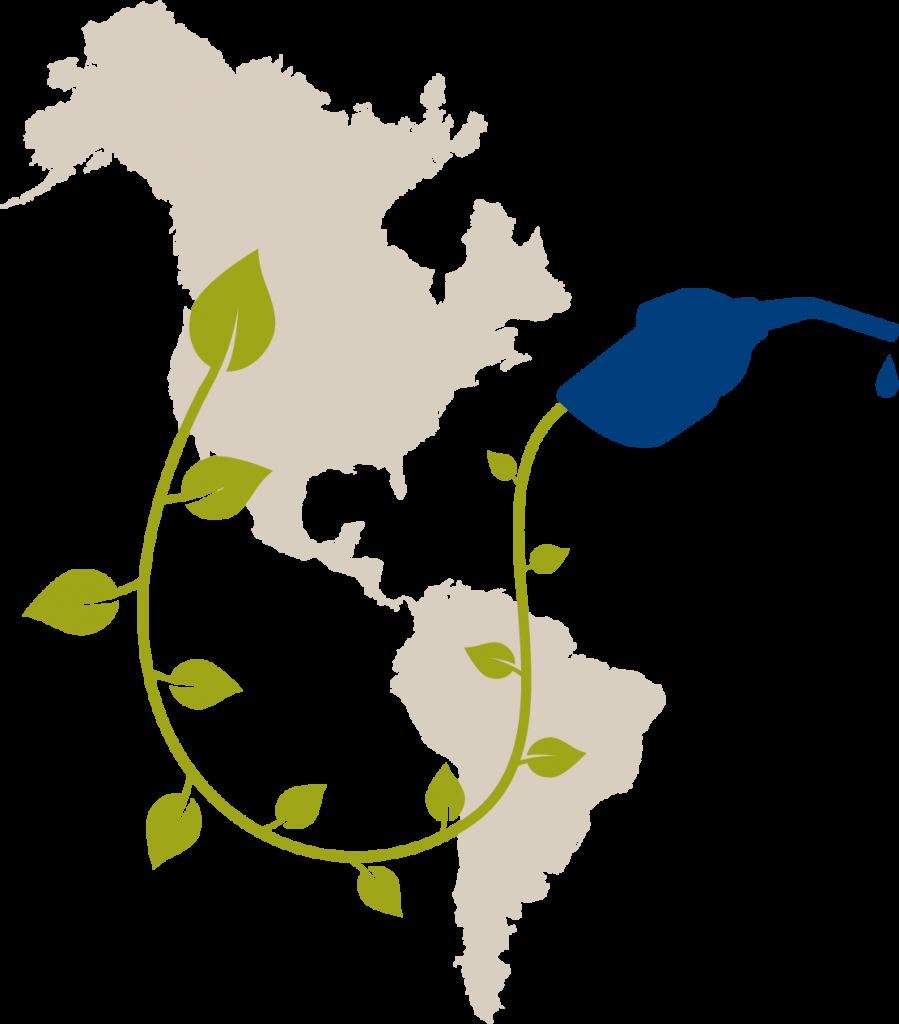 map-vine