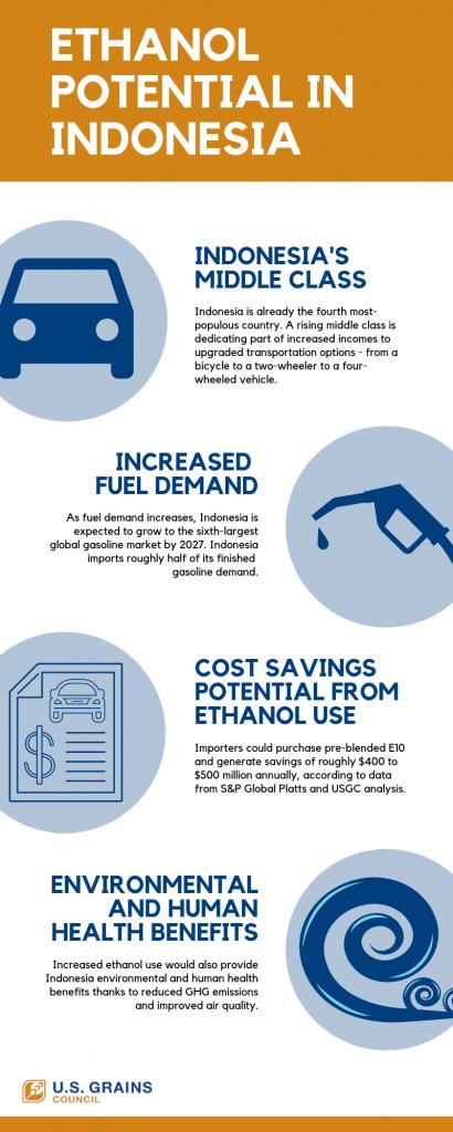 Indonesia Ethanol Potential
