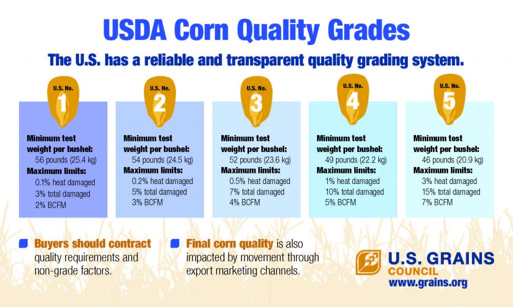 Infographics - U S  GRAINS COUNCIL