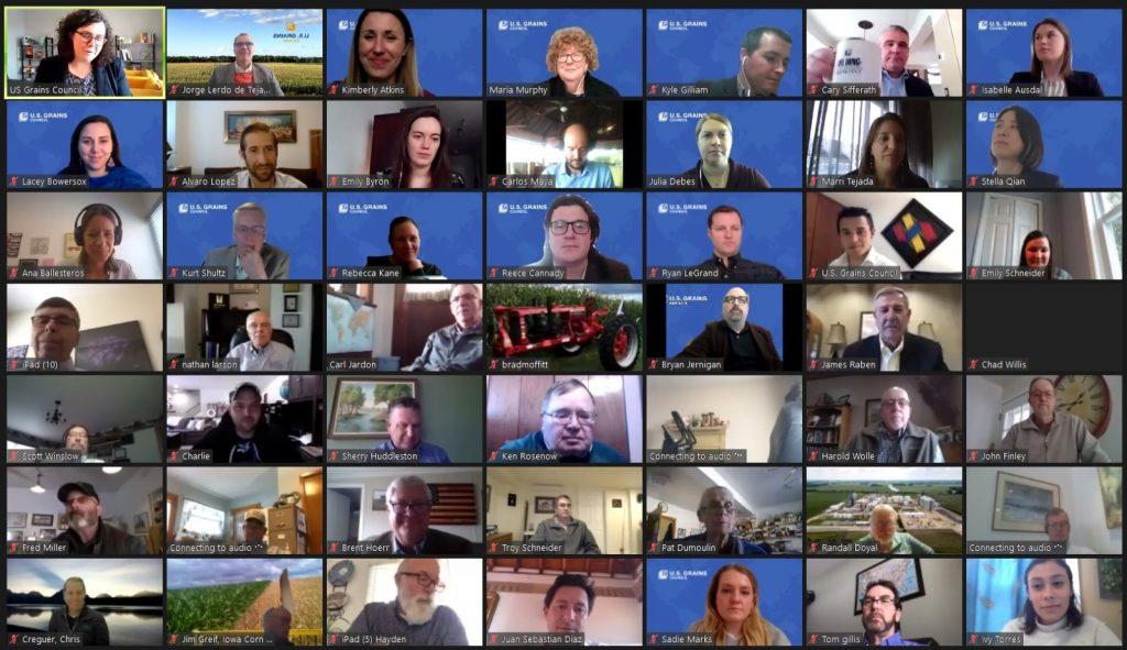 Large Online Meeting in Grid Format